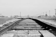 The rail tracks leading into Auschwitz
